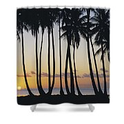 Tropical Palm Sunset Shower Curtain