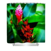 Tropical Plants Shower Curtain