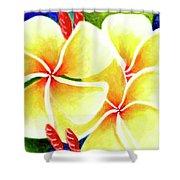 Tropical Plumeria Flowers #226 Shower Curtain