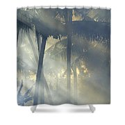 Tropical Rays Shower Curtain