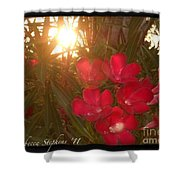 Tropical Red Shower Curtain