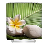 Tropical Still Life Shower Curtain