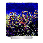 Tropical Sunrise 2 Shower Curtain