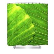 Tropical Vibrant Green Shower Curtain