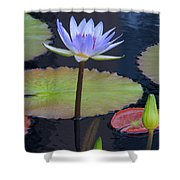 Tropical Water Colors Shower Curtain