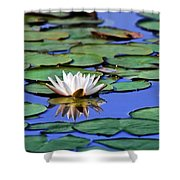 Tropical Water Lily Shower Curtain