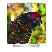 Tropical Wonder Shower Curtain