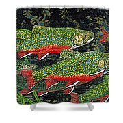 Trout Art Brook Trout Fish Artwork Giclee Wildlife Underwater Shower Curtain