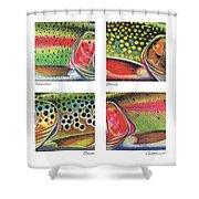 Trout Colors Shower Curtain