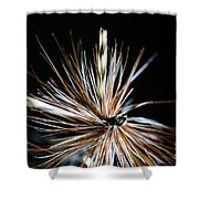 Trout Fly Shower Curtain