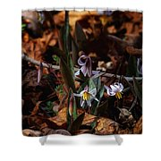 Trout Lillie In Lost Valley Shower Curtain