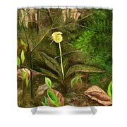 Trout Lily Shower Curtain