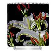 True Lilies Shower Curtain