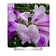 Trumpet Flower 11 Shower Curtain