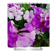 Trumpet Flower 2 Shower Curtain