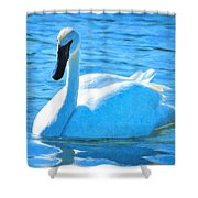 Trumpeter Swan Impressions Shower Curtain