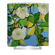 Trumpets In Paradise Shower Curtain