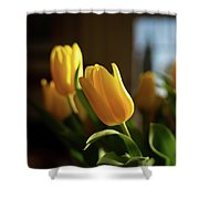 Tu Lips Too Shower Curtain by Michael Hope