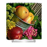 Tub Of Apples Shower Curtain