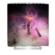 Tube Anemone Shower Curtain