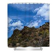 Tucson Mountains Shower Curtain