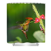 Tufted Coquette Shower Curtain