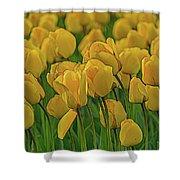 Tulip. Shower Curtain