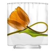 Tulip Art On White Background Shower Curtain