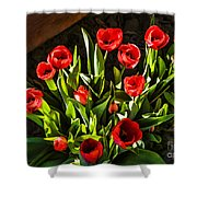 Tulip Beauties Shower Curtain