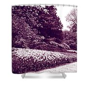 Tulip Beds Shower Curtain