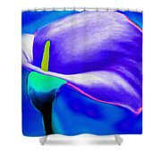 Tulip Blue By Nicholas Nixo Efthimiou Shower Curtain