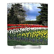 Tulip Country Shower Curtain