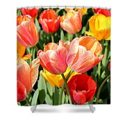 Tulip Crossing Shower Curtain