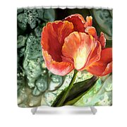 Tulip Dance Shower Curtain