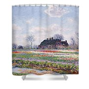 Tulip Fields At Sassenheim Shower Curtain