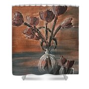 Tulip Flowers Bouquet In Two Round Water Filled Small Globe Shaped Vases On A Table Still Life Of Bo Shower Curtain