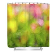 Tulip Flowers Field Blurred Defocused Background Shower Curtain