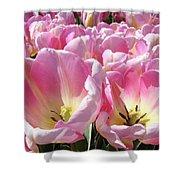 Tulip Flowers Garden Art Pink Tulips Baslee Troutman Shower Curtain