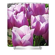 Tulip Garden Flowers Purple Lavender Pastel Art Baslee Troutman Shower Curtain