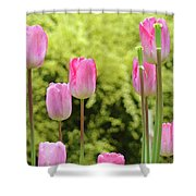 Tulip Garden Landscape Art Prints Pink Tulips Floral Baslee Troutman Shower Curtain