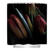 Tulip Grunge Shower Curtain