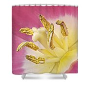 Tulip Heart Shower Curtain