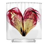 Tulip Heart Shower Curtain
