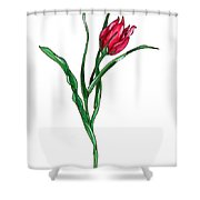 Tulip Illustration Shower Curtain