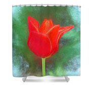 Tulip In Abstract. Shower Curtain