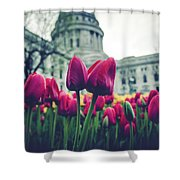 Tulip In Bloom Shower Curtain
