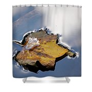 Tulip Leaf On Water Shower Curtain