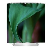Tulip Leaves Shower Curtain