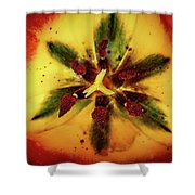 Tulip Macro Shower Curtain