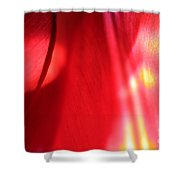 Tulip Mind Shower Curtain